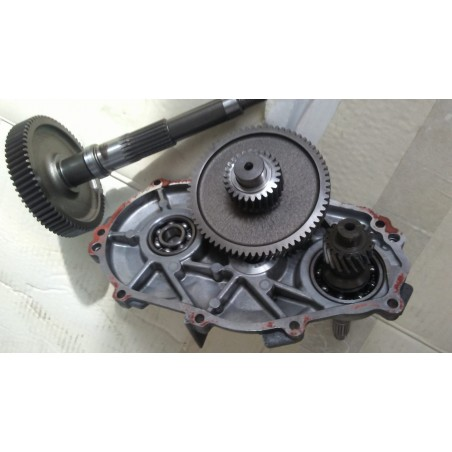 Ingranaggi Ruota Posteriore Aprilia Scarabeo 125-150-200 Rotax 1999-2004