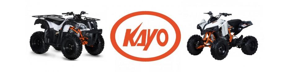 Ricambi Quad Kayo